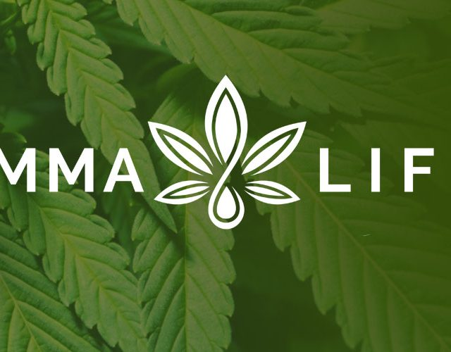 ammalife cbd oil review